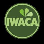 Icon-IWACA3